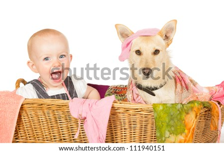 Mischievous happy young baby and dog with a guilty expression sitting in the laundry basket covered in washing - stock photo