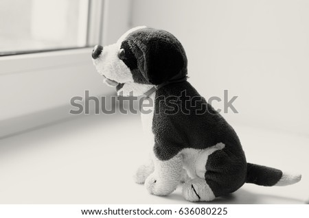 Missing child. Abandoned toy. Loneliness. Black and white image.