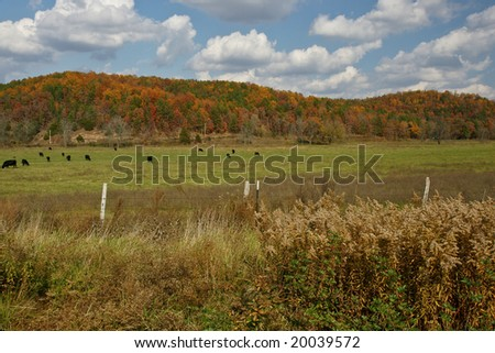 Missouri Pasture - stock photo