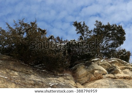 Missouri River bluff covered with evergreen bushes against the blue sky - stock photo