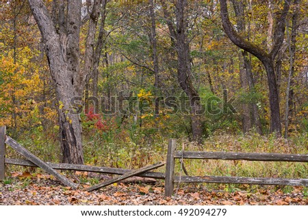 Missouri woods and a broken down split rail fence.