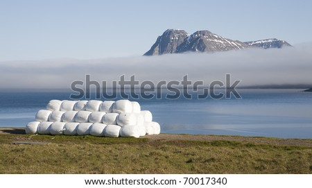 Mist Landscape in Iceland - stock photo