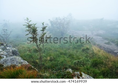 Mist on the mountain in Norway