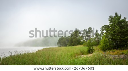 mist over the forest lake - stock photo