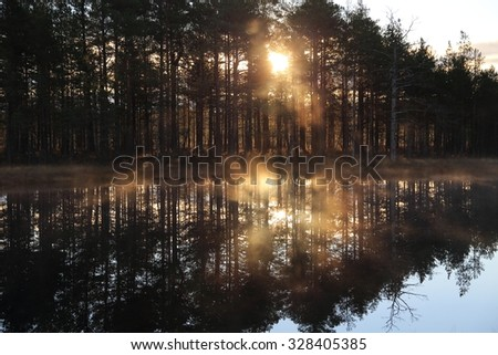 Mist over the water at sunrise in pine forest - stock photo
