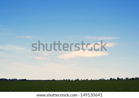 Mistic background of the dark green field and blue sky - stock photo