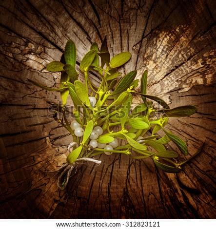 mistletoe branch on a wooden background - stock photo