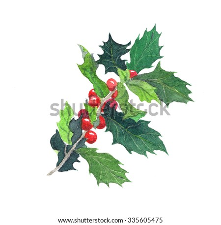 Mistletoe branch with red berries. Christmas watercolor - stock photo