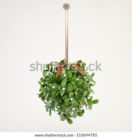 mistletoe hanging from the ceiling with grey background - stock photo