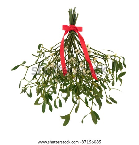 Mistletoe with berries and tied with a red ribbon with bow isolated over white background. - stock photo