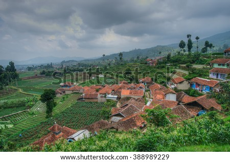 Misty and cloudy view of houses and paddy field in Ciwidey, West Java at Bandung, Indonesia.