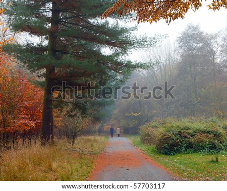 Misty autumnal park - stock photo