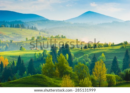 Misty Carpathian spring hills covered with fresh green grass in a light of sunrise. Mountain valley