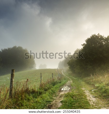 Misty countryside road.North Poland Pomerania province/Misty road landscape  - stock photo