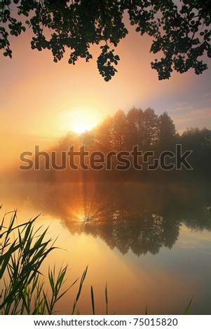 Misty dawn at the forest lake - stock photo