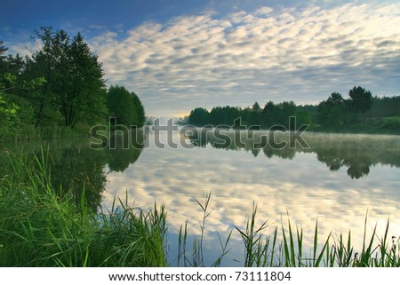 Misty dawn over Lake Forest - stock photo