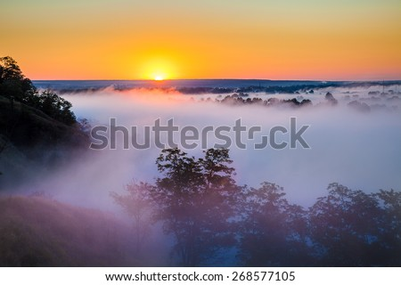 Misty dawn over Valley and the forest - stock photo