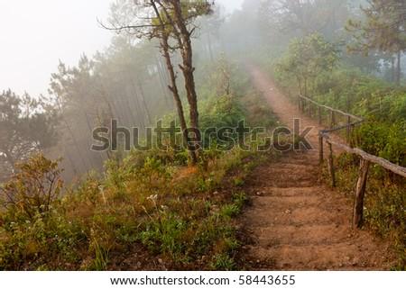Misty Dirt Stairway - stock photo