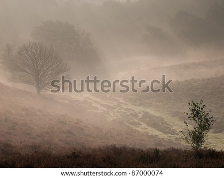 Misty fairy tale landscape - stock photo