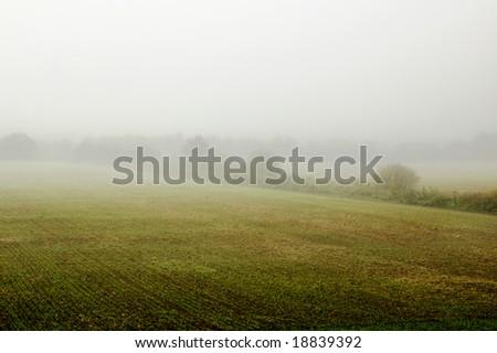 misty field - stock photo