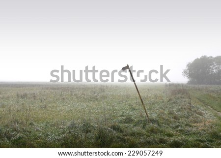 misty field with metal pole with arrow on top