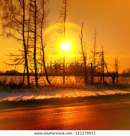 Misty golden sunset in winter season, sun and trees