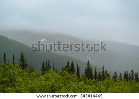 Misty hills and green woods. Polar Ular mountains, National park Yugyd-Va, Russia. - stock photo