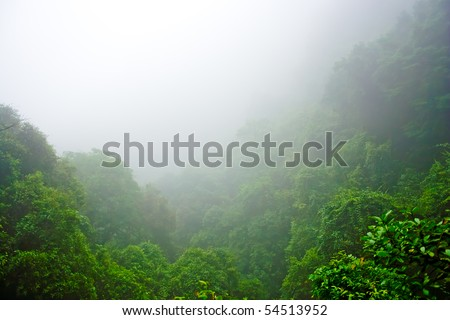 Misty hilly area with foggy - stock photo