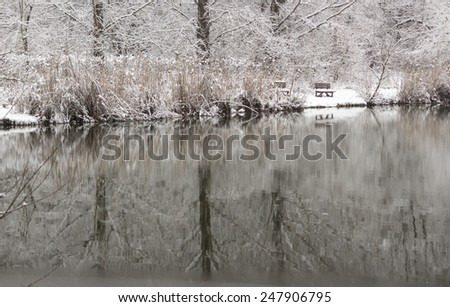 Misty lake during winter. - stock photo