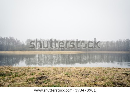 Misty lake with tree reflections in the autumn - stock photo