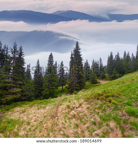 Misty landscape in the mountains. - stock photo