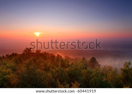 Misty morning - stock photo