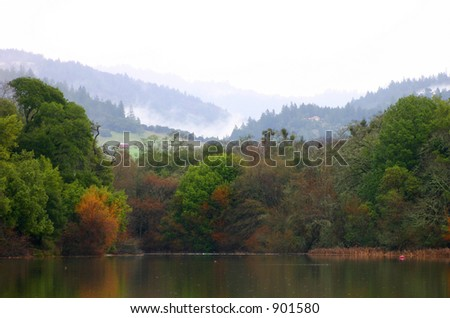 Misty Morning at the Lake - stock photo