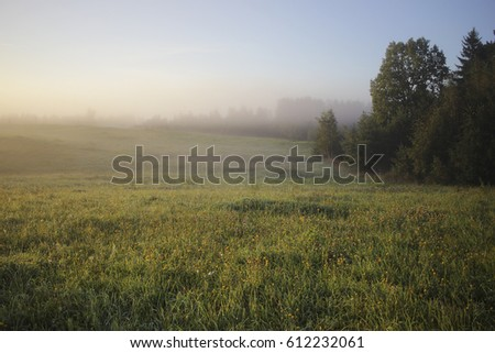 Misty morning before sunrise