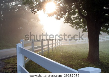 Misty morning fences. - stock photo