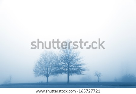 Misty morning in the winter time - stock photo