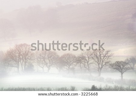 Misty morning in Yorkshire Dales - stock photo