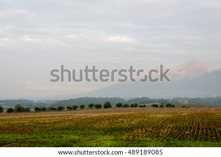 Misty morning mountain view with peaks in mist and forest trees in Slovakia