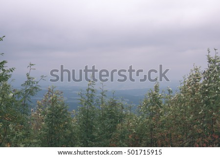 Misty morning mountain view with peaks in mist and forest trees in Slovakia - vintage film look