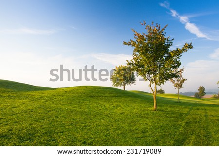 Misty morning on a empty golf course - stock photo