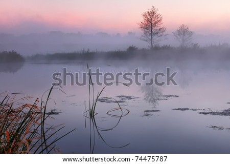 Misty morning on a small lake - stock photo