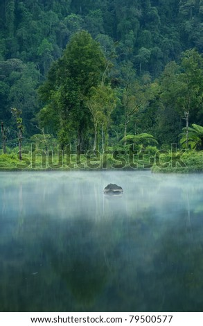 Misty morning on a small lake near a rain forest - stock photo