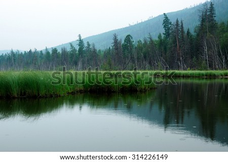 misty morning on the lake. early summer morning. drizzling rain. forest on the lake. photo toned, soft focus  - stock photo