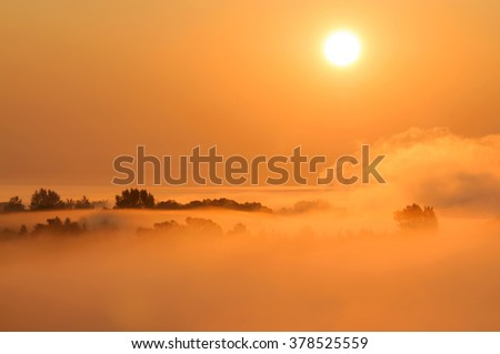 Misty morning scene with trees and fog lit by rising sun. - stock photo