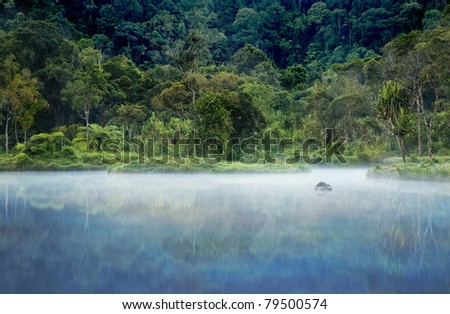 Misty morning shot of a small lake with a rain forest in the background - stock photo