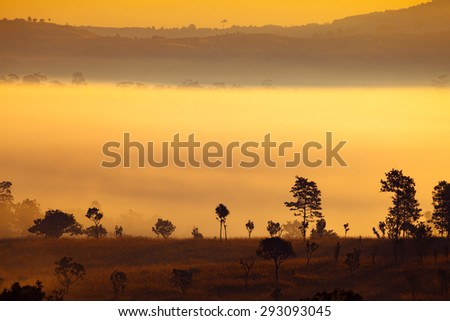 misty morning sunrise in mountain at Thung Salang Luang National Park Phetchabun,Thailand  - stock photo
