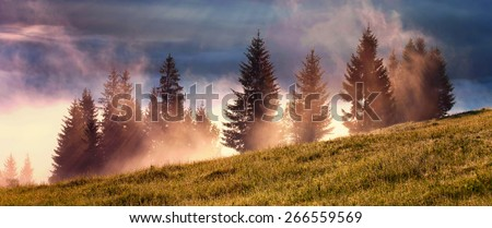 Misty morning with sun rays - stock photo