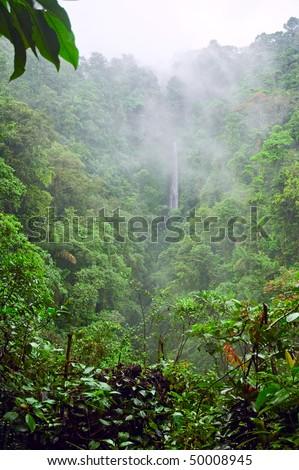 Misty mountain jungle in Costa Rica. - stock photo