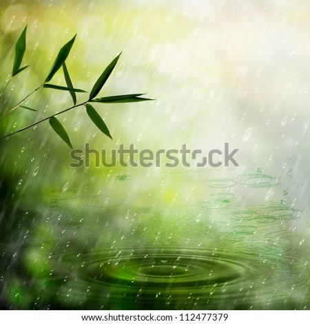 Misty rain in the bamboo forest. Abstract natural backgrounds - stock photo
