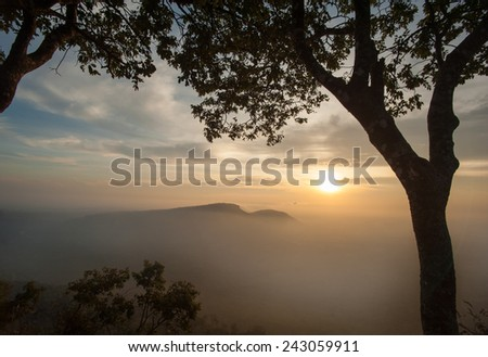 Misty sunrise clouds below mountains tree silhouette
